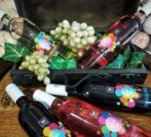 Mladé vína 2020 v predaji
