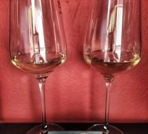 Sudové vína od Vinárstva Záruba & Bartoš