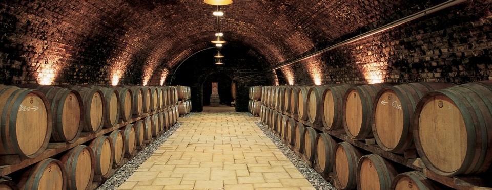 Najväčší výber sudových vín  v Trnave